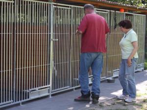 Schronisko fundacji Animals